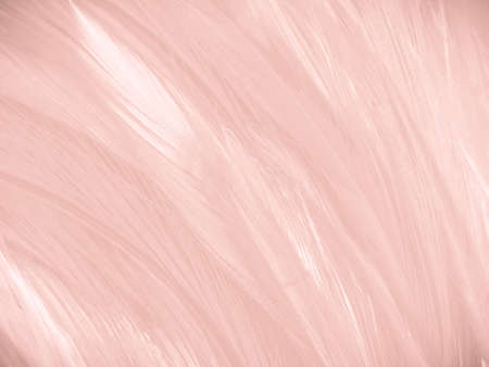 Beautiful abstract white and pink feathers on white background and soft white feather texture on pink pattern and pink background, feather background, pink banners 스톡 콘텐츠