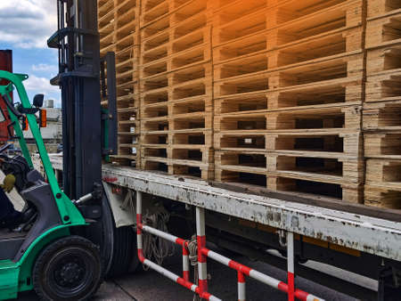 Worker driving forklift to loading and unloading wooden pallets from truck to warehouse cargo storage, shipment in logistics and transportation industrial, wood pallets stack Imagens