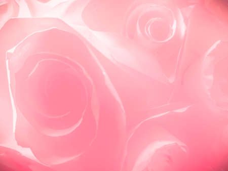 Beautiful abstract color pink flowers on white background and white flower frame and pink leaves texture, pink background, colorful graphics banner happy valentine day