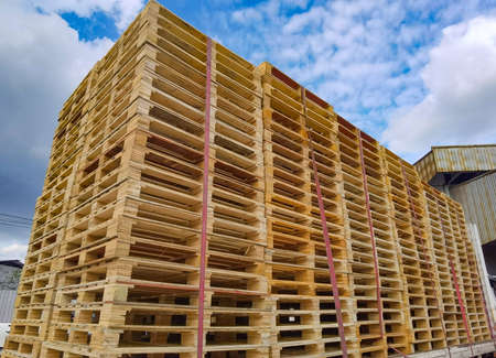 Worker driving forklift to loading and unloading wooden pallets from truck to warehouse cargo storage, shipment in freight logistics and transportation industrial, wood pallets stack