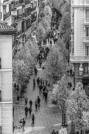 Madrid, Spain. March 21, 2017. People enjoying blooming cherry trees from Plaza de Isabel II along Arenal street (Calle del Arenal) to Puerta del Sol square