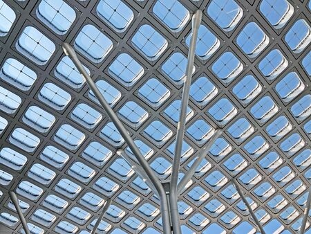 Thin Columns Bears Light Roof. Regular Gridded Canopy Covers Public Space.
