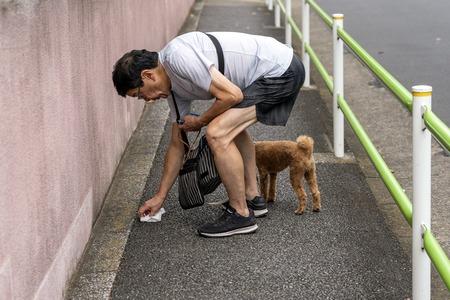 TOKYO, JAPAN - OCTOBER 8, 2018. The Man Picks Up Dogs Poop by Tissue on the Street. Redactioneel