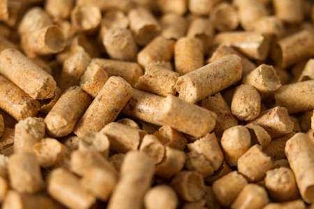filings: Pellets - the new eco-friendly fuel, made from pine wood shavings. Pellets are more environmentally friendly than coal. Pellets emit only half as much heat Nathon than natural gas per cubic meter. At the same ton of pellets it costs less than a cubic mete Stock Photo