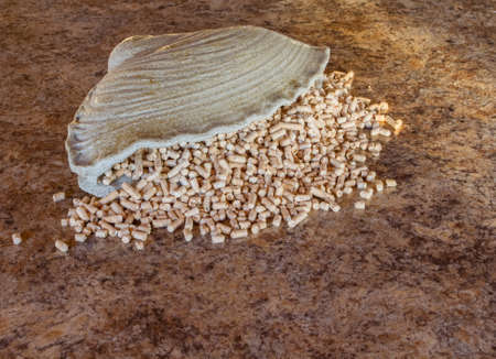 wood pellets: Pellets - the new eco-friendly fuel, made from pine wood shavings. Pellets are more environmentally friendly than coal. Pellets emit only half as much heat Nathon than natural gas per cubic meter.