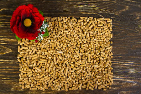 wood pellets: I invite you to see my other illustration with pellets! Pellets - the new eco-friendly fuel, made from pine wood shavings. Pellets are more environmentally friendly than coal. Pellets emit only half as much heat Nathon than natural gas per cubic meter. Stock Photo