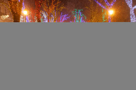 blackness: Odessa. Primorsky Boulevard is decorated with Christmas lights. Christmas.