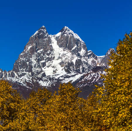 Humped peak of Mount Ushba, Georgia. Down in the early autumn, warmth and trees in the autumn crimson foliage. The peak and the mountain chain are in the snow. Editorial