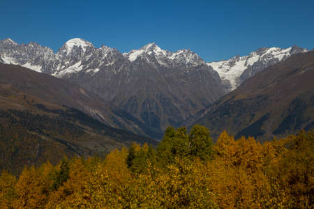 Humped peak of Mount Ushba, Georgia. Down in the early autumn, warmth and trees in the autumn crimson foliage. The peak and the mountain chain are in the snow. Archivio Fotografico