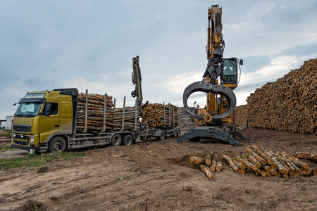 logging truck: Cranes at warehouse territory logs are unloaded from the truck. Stock Photo