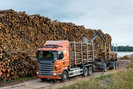 logging truck: Truck unloads timber at port warehouse field. Stock Photo