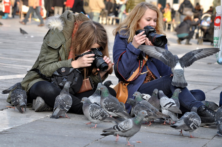 take a history: VENICE, ITALY - NOVEMBER 26, 2011: Unknown girls in the St. Marks Square photographing pigeons.
