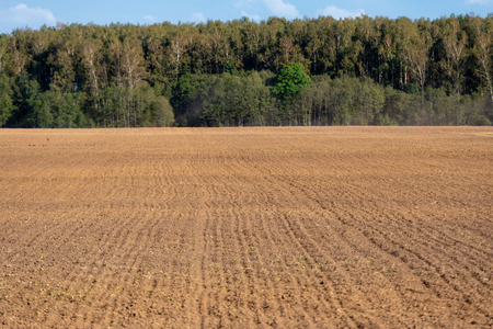 Plowed field with forest in the background.