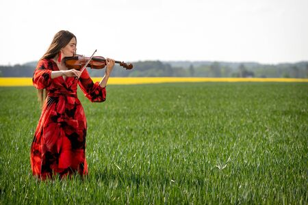 Young woman in red dress playing violin in green meadow. Reklamní fotografie