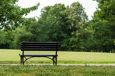 Bench in the park, at the foot of the pedestrian path. Rear view. Banque d'images