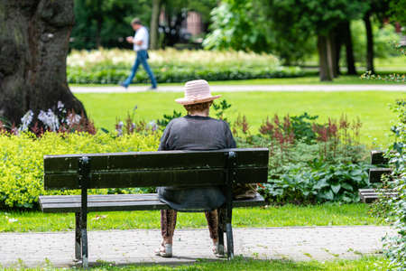 An old woman rests in a park bench on a sunny summer day 스톡 콘텐츠