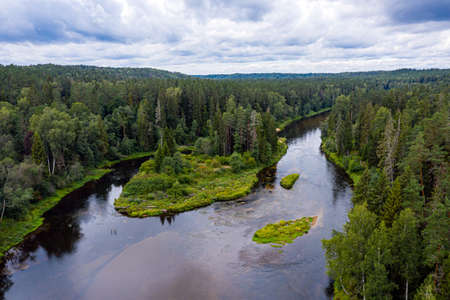summer landscape from above with the river Gauja, which winds through mixed tree forests, Gauja National Park, Latvia