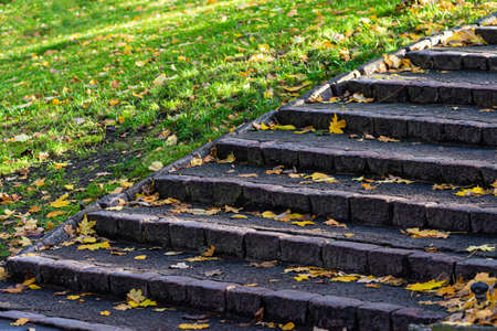 stone stairs with steps covered with fallen leave in city park
