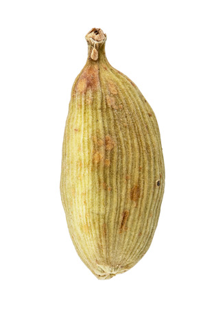 Cardamom isolated on white background. Clipping path Stock Photo