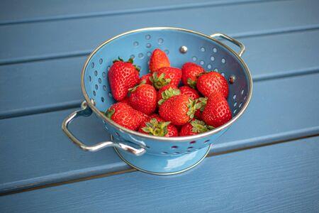 Fresh strawberries in a blue colander