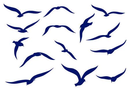 veréb: Seagull sziluettek