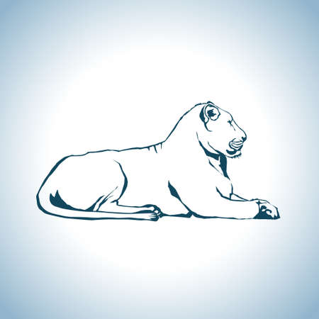 lion drawing: Disegno Leone