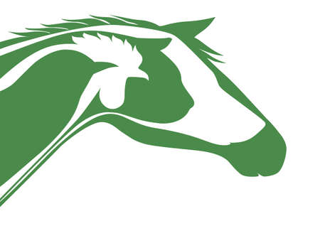 Green veterinary logo Vector