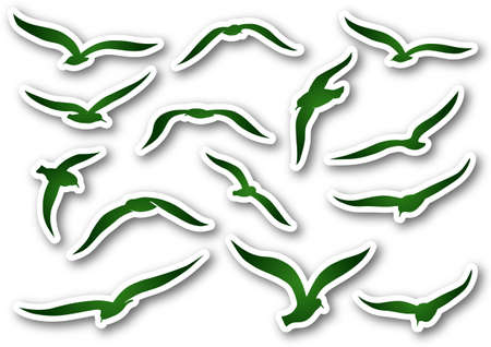 Green seagulls over paper Vector