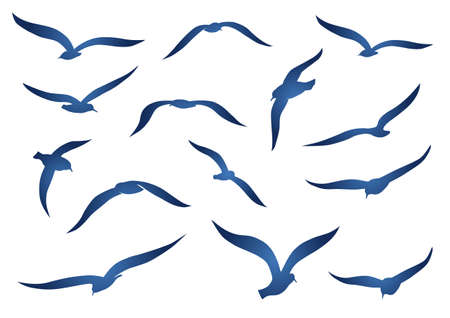 Blue seagulls Vector