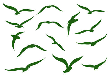 Green seagulls Vector
