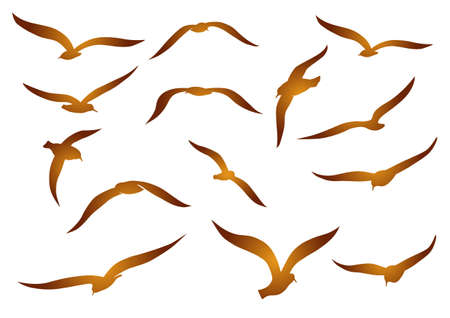 Golden seagulls Vector