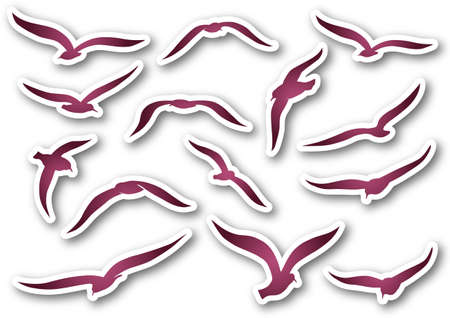 Pink seagulls over paper Vector