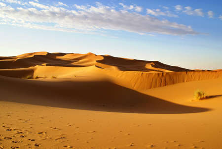 erg: Morocco. Light and shadow Erg Chebbi dunes