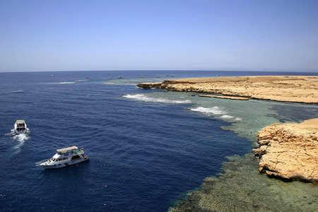 mohammed: Egypt. The reserve of Ras Mohammed