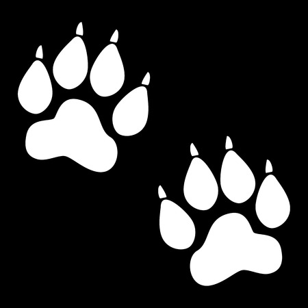 animal tracks: Animal Tracks. Vector illustration. White on the black Illustration