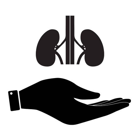 www arm: Kidneys in hand icon, care symbol vector illustration. Flat design style