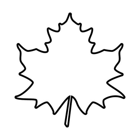 leaf line: Maple leaf line icon. Vector illustration on white background