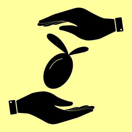 oliva: Oliva sign. Save or protect symbol by hands. Illustration