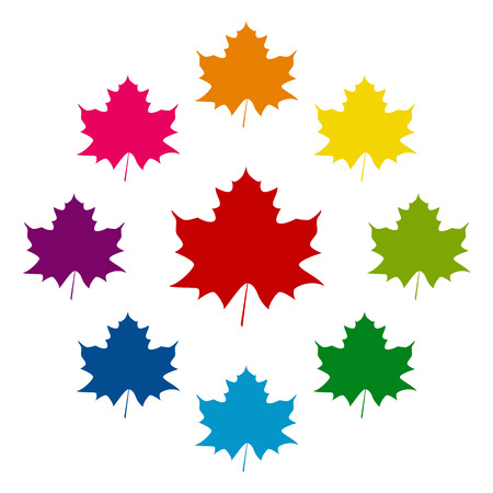 Maple leaf icons colorfull set on white background Çizim