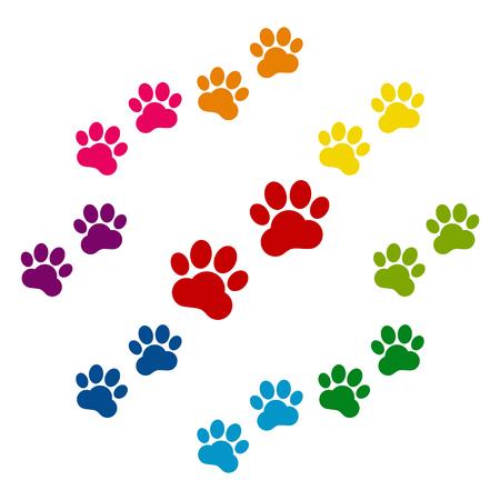 huellas de animales: Pistas animales iconos ColorFull establecidos en el fondo blanco Vectores