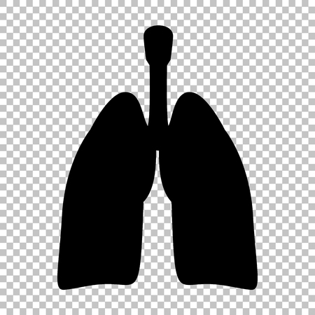 pulmones: Human organs. Lungs sign. Flat style icon on transparent background Illustration