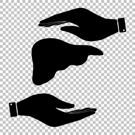 liver: Human anatomy. Liver sign. Save or protect symbol by hands.