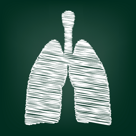 lung: Human organs. Lungs sign. Flat style icon with chalk effect Illustration