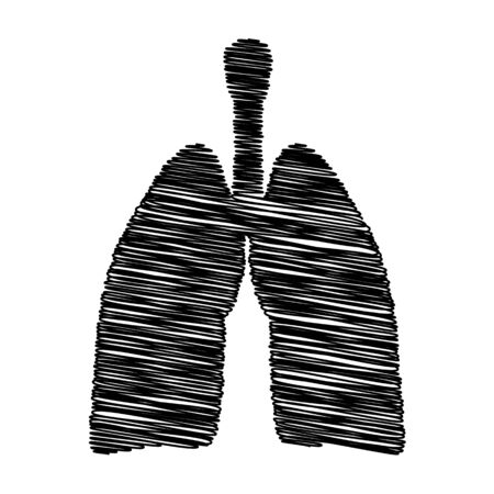 pulmones: Human organs. Lungs sign. Flat style icon with scribble effect Illustration