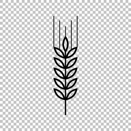 Wheat line vector icon on transparent background