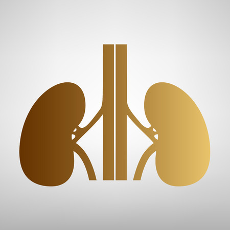 renal: Human kidneys sign. Flat style icon with golden gradient Illustration