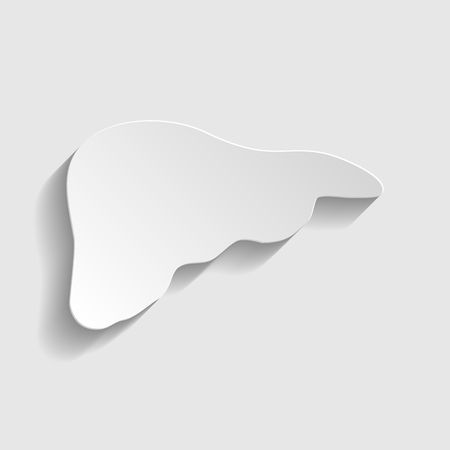 human liver: Human anatomy. Liver sign. Paper style icon with shadow on gray.