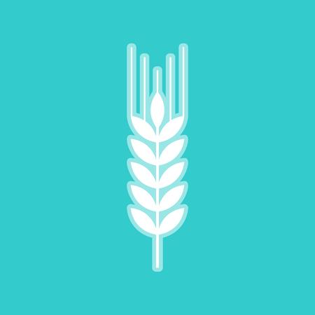whitish: Wheat sign. White icon with whitish background on torquoise flat color. Illustration