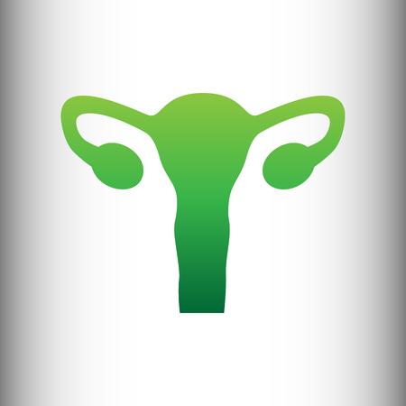 testicles: Human Body Anatomy. Uterus sign. Green gradient icon on gray gradient backround. Illustration