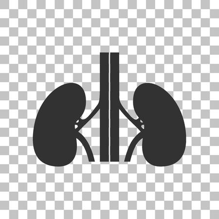 ureter: Human kidneys sign. Dark gray icon on transparent background.
